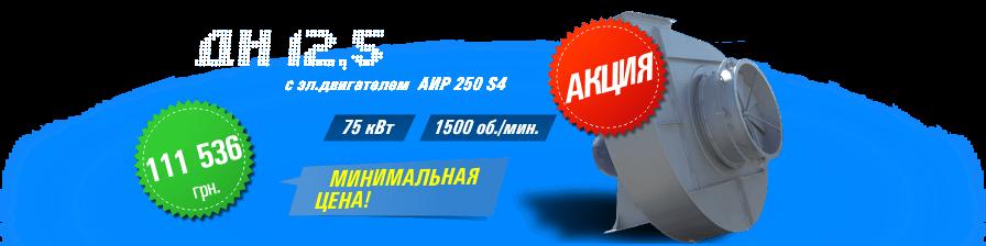 ДН №12,5 с эл.двигателем АИР 250 S4 75 кВт 1500 об./мин